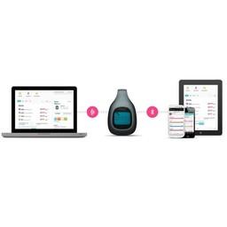LG Fitbit