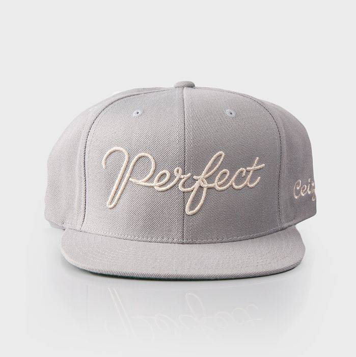 The Perfect Snapback Grey
