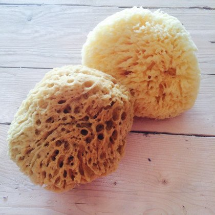 French Soaps Natural Sea Sponges