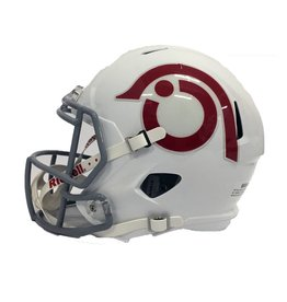 Riddell Sports LARGE REPLICA BIRD HEAD HELMET