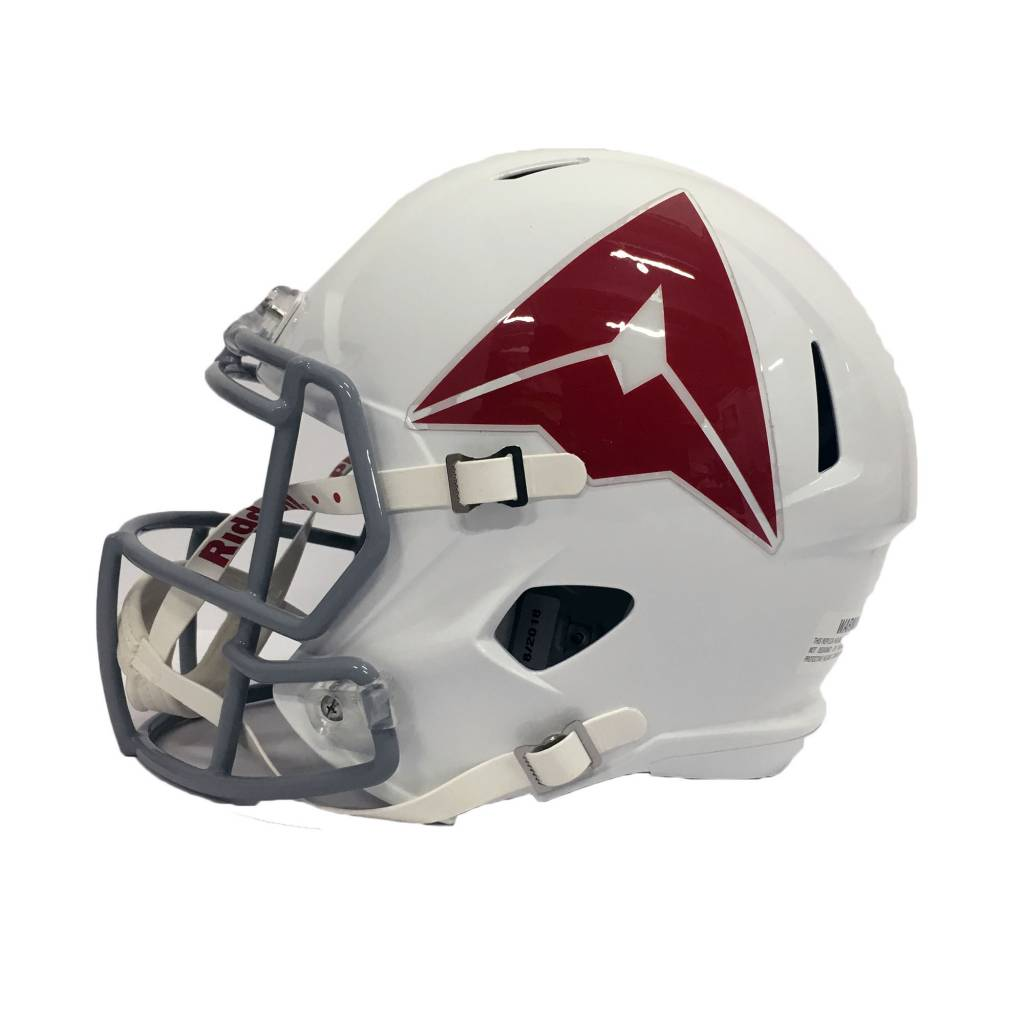 Riddell Sports LARGE REPLICA DELTA HELMET