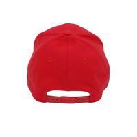 TRUCK 950 HAT