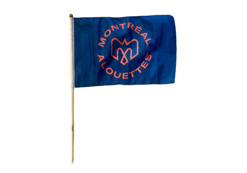 Sports Vault alsMTL FLAG ON A STICK