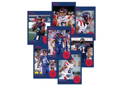 AlsFC 2019 PLAYER CARDS