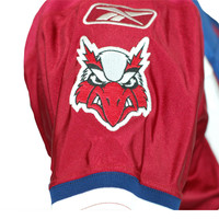 2010 WOLDU GAME JERSEY