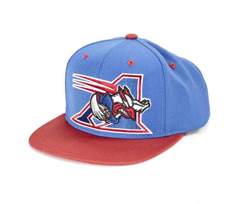 BIG ALS HAT