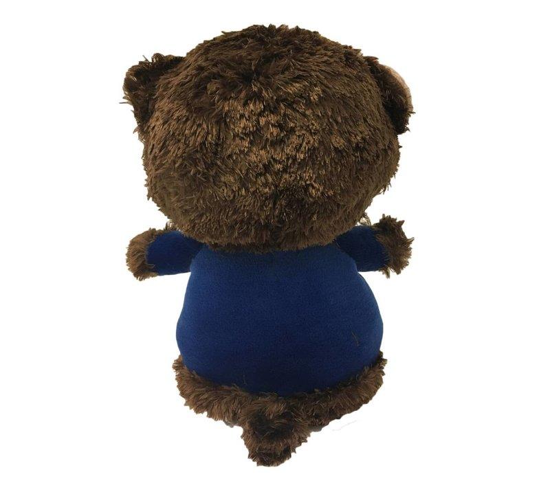 Mr BIG BEAR
