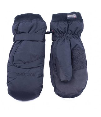 Auclair Hot Tips Mitts Men