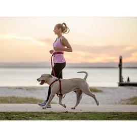 EZY Dog Ezy Dog Road Runner Leash