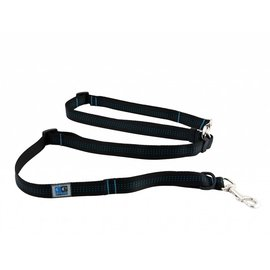 RC Pet Products RC Pet Products Beyond Control Leash