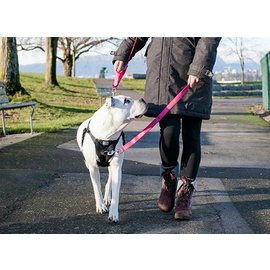 RC Pet Products RC Pet Products Ultimate Control Harness