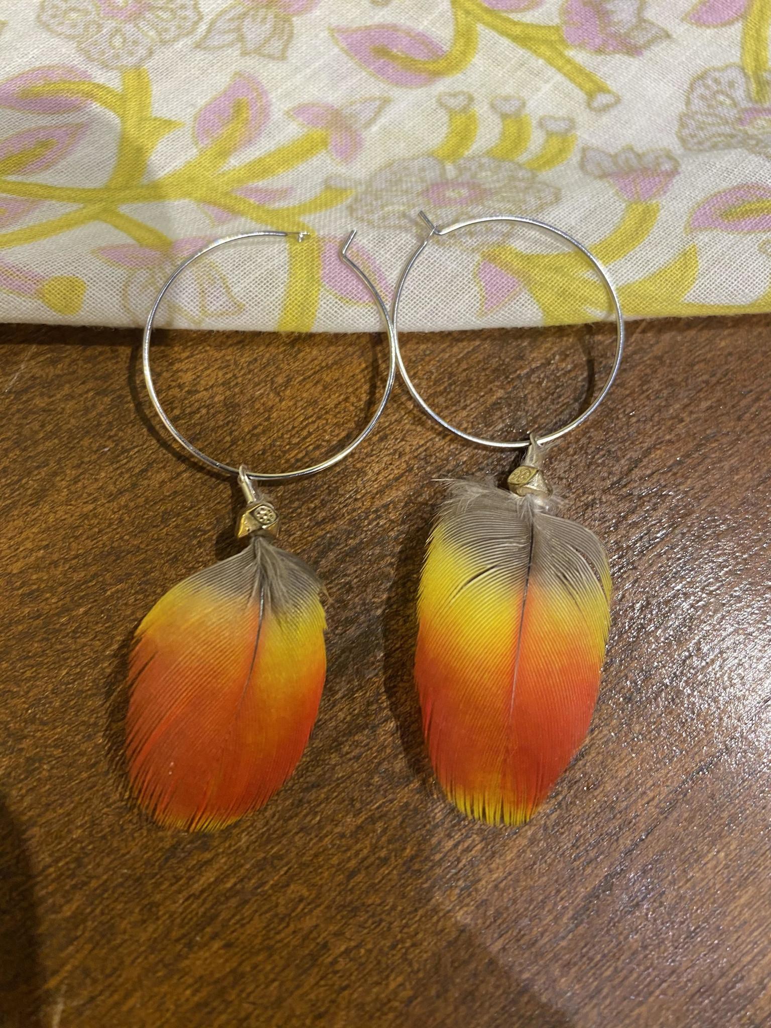 Ziggywear Macaw Feather On Hoop