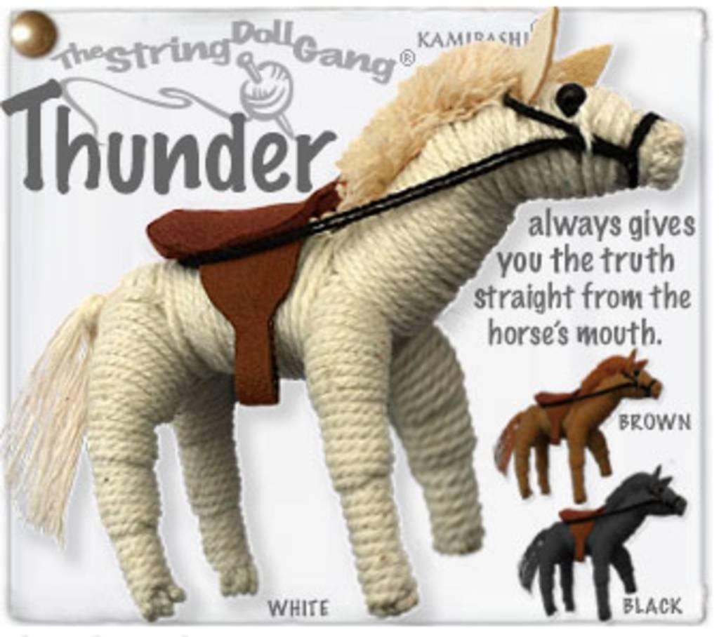 Kamibashi Thunder