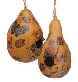 Lucuma Whimsy Bug Gourd