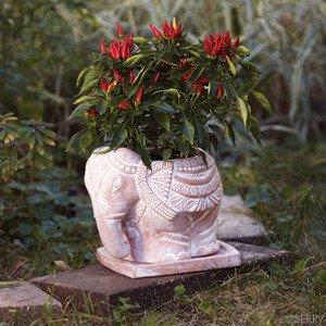 SERRV Terra Cotta Elephant Planter