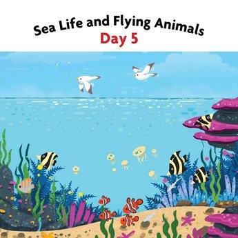6 Days of Creation - eBook