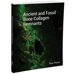 Dr. Brian Thomas Ancient and Fossil Bone Collagen Remnants
