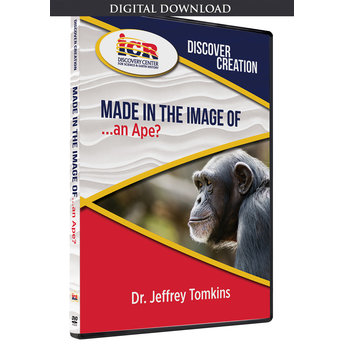 Dr. Jeff Tomkins Discover Creation: Made in the Image of an Ape? - Download