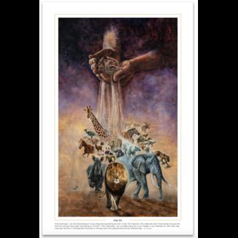 Creation Series Day 6 - Print