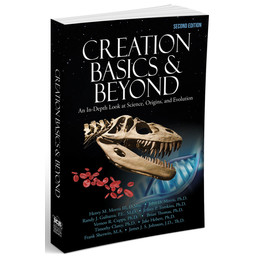 Creation Basics & Beyond, 2nd Ed.