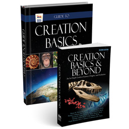 Pack: Creation Basics