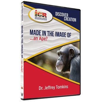 Dr. Jeff Tomkins Discover Creation: Made in the Image of an Ape?