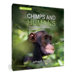 Dr. Jeff Tomkins Chimps and Humans