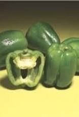 Pepper, Better Belle - Vegetable, organic Qt