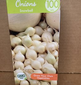 Onion sets, Snowball, 100 qty Boxed