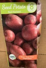 Potatoe, Red Norland, 8 qty Boxed