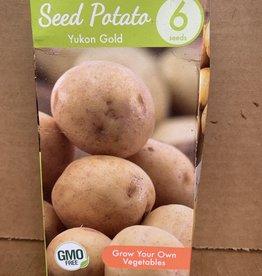 Potatoe, Yukon Gold, 6 qty Boxed