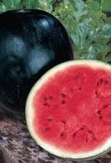 "Watermelon, Sugar Baby - Vegetable, 4"" pot"