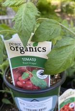 Tomato, Red Grape- Vegetable, organic Qt