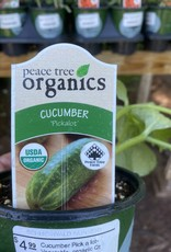 Cucumber Pick a lot- Vegetable, organic Qt