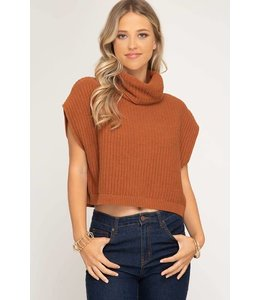 She + Sky Cowl Neck Crop Top Sweater