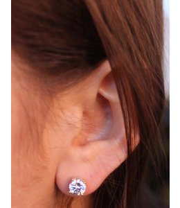 Caroline Hill CZ Stud Earrings
