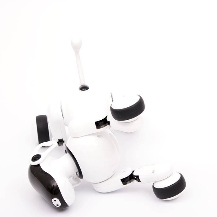 Odyssey Toys Gizmo Smart Puppy by Odyssey