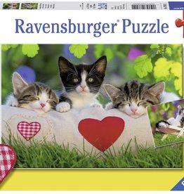 Sleepy Kitten 2x24-pc Puzzles by Ravensburger