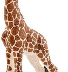Giraffe Calf Figure by Schleich