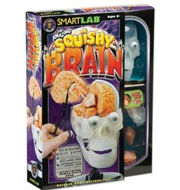 The Amazing Squishy Brain by Smart Lab