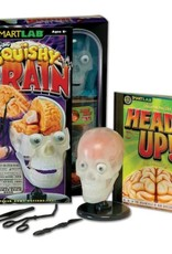 The Amazing Squishy Brain by Smart Lab