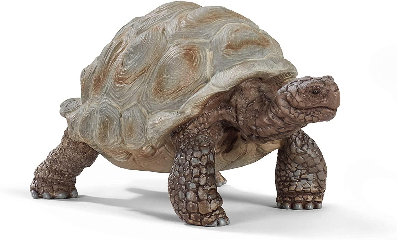 Giant Tortoise Figure by Schleich