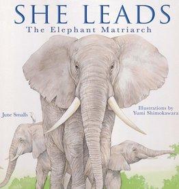 She Leads: The Elephant Matriarch