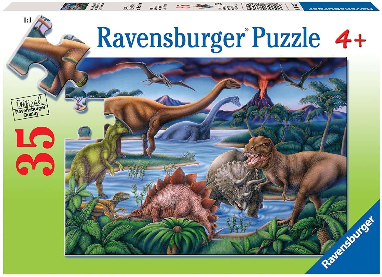 Dinosaur Playground 35 pc Puz