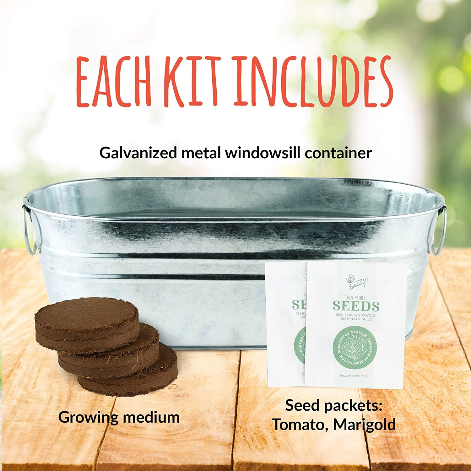 My First Garden Windowsill Kit by Buzzy