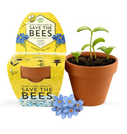 Save The Bees Forget-Me-Not Kit by Buzzy