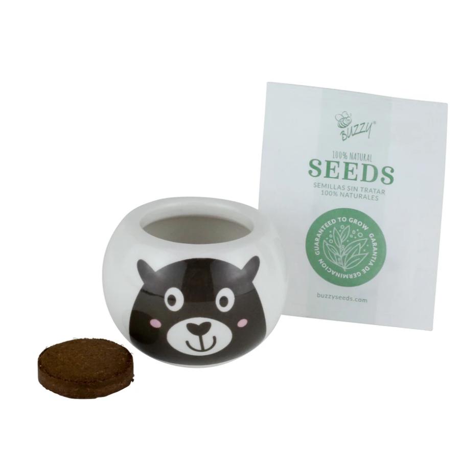 Wild Adventure Bear Ceramic Grow Kit by Buzzy