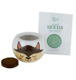 Wild Adventure Fox Ceramic Grow Kit by Buzzy