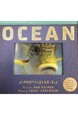 Ocean: A Photicular Book