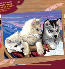 Peinture à numéros senior - Huskies